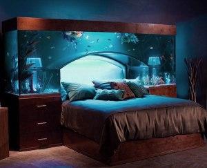 fish-tank-bed1