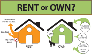 rent or own