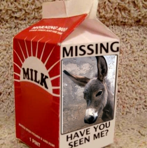 missing_wii_milk_carton_lg-copy