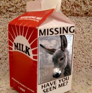 missing_wii_milk_carton_lg-copy